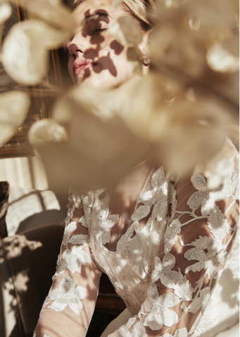 Lyn Ashworth Azalea